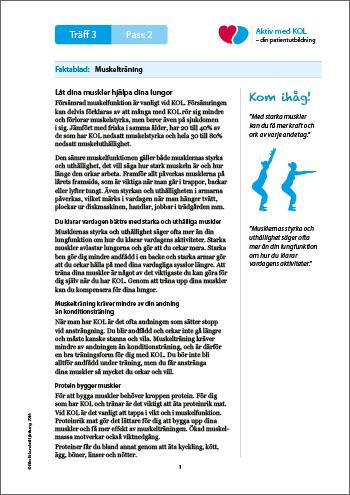 Traff 3_Faktablad_Muskeltraning_